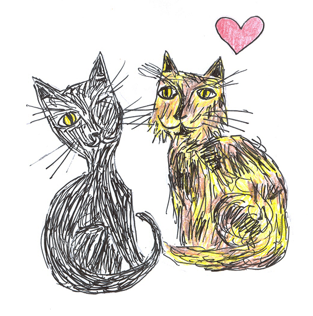 my cats in love
